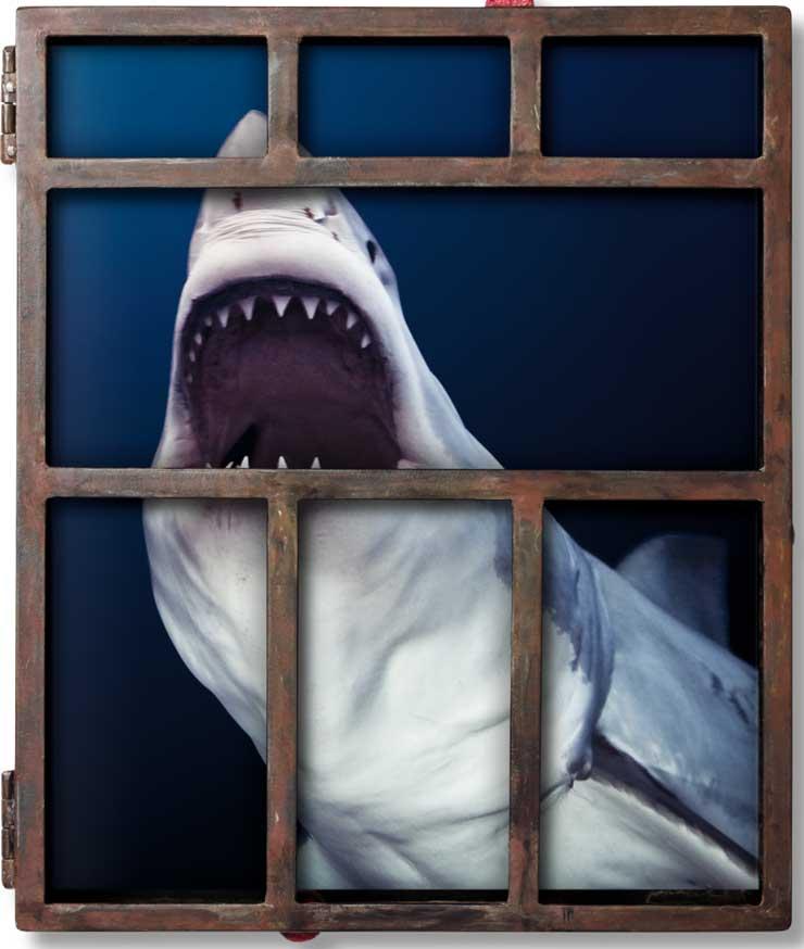 TASCHEN iwc-sharks_art_edition_