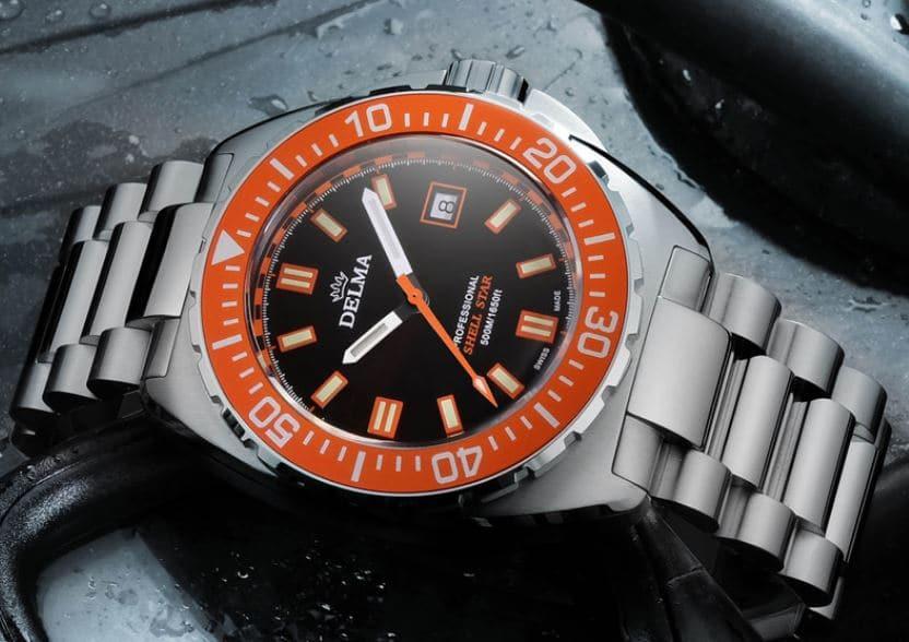 Delma Watch